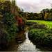 River Stour Stourbridge
