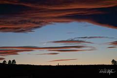 Photographer Shoots New Moon At Sunset (dcstep) Tags: dsc5820dxo sunset clouds pinkclouds crescentmoon waxingcrescentmoon newmoon photographer horizon cherrycreekstatepark colorado usa aurora sonya9 fe100400mmf4556gmoss fe14xteleconverter allrightsreserved copyright2017davidcstephens dxophotolab101 nature urban urbannature