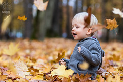Kulbiccy Family: Leaves, pt. I (mkarwowski) Tags: child autumn fall canon eos 80d canoneos80d eos80d canonef85mmf18usm ef 85mm f18 usm ef85mmf18usm