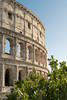 Colosseum (tehroester) Tags: colosseum rome architecture romans blue sky lines green building history d3300 nikon 35mm