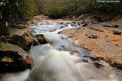 Route215+1_9263_TCW (nickp_63) Tags: whitewater flow rocky river highway 215 north carolina nc long exposure cascade rapids blue ridge parkway nature boulders platinumheartaward waterfall water creek