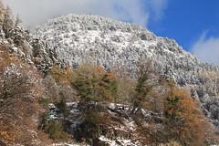 entre deux saisons (bulbocode909) Tags: valais suisse montagnes nature forêts arbres nuages brume vert bleu orange paysages neige