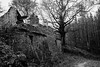 Ruins (Jethro_aqualung) Tags: bn bw monochrome outdoor nikon d3100 via degli dei bofi house tree