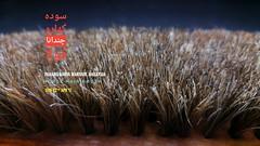 Horse hair brush (Agarwood For Life) Tags: rare kyara kinam kynam qinam qinan agarwood 沉香 香道 香文化 奇楠 黄熟香 沈梗 泥沈香 沈香 incense perfume scent aquilaria aloeswood eaglewood resin oud oudh palosanto candan frankincense hirta kodo censer bonsai ambergris bracelet rosary sandalwood incenseheater incenseburner electronicincenseheater musk malaccensis oolong gaharu agaru agar amber алойноедерево العود adlerholz ماليزيا じんこう 沈香とは 沈香木 ジンコウ 伽羅 沉香树 沉香木 sacra rostrata oudoil oudhoil incenserheater incensestick electronicincenseburner electricincenseheater electricincenseburner agarwoodbracelet agarwoodoil agarwoodpendant agarwoodtea agarwoodcoffee agarwoodperfume agarwoodhydrosol agarwoodtree agilawood