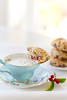 Cranberry scones with a cup of foamy milk and marshmallows (Au Petit Gout) Tags: elizabeth gaubeka photography food styling foodstyling still life airy cranberry scones foamy milk treat tea cup inspiration getty