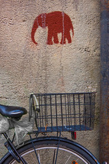 Elephant on a Bicycle (suzanne~) Tags: lensbaby maxvorstadt velvet56 bike bicycle elephaant streetart stencil 100bicyclesproject outdoor street munich bavaria germany pochoir