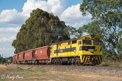 End of Train Order (Henry's Railway Gallery) Tags: 44204 442class alco americanlocomotivecompany diesel ssr southernshorthaulrailroad 2mc3 mc3 graintrain freighttrain benalla