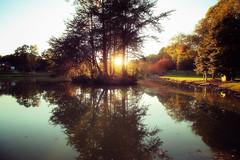November in North Carolina (dorameulman) Tags: sunset autumn fall holiday northcarolina landscapephotography landscape gastonia heatherlock inmybackyard haiku poem canon7dmark11 canon outdoor lake