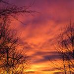 Fall Sky - Ciel d'automne thumbnail