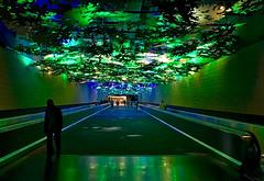 TERMINAL CONCOURSE (PHOTOGRAPHY|bydamanti) Tags: atlanta georgia unitedstates us hartsfieldjacksoninternationalairport airport terminal concourse delta