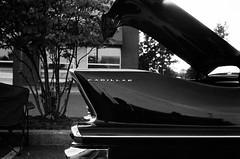 Cadillac Tail Fin (Helios 1984) Tags: topcon35l beselerl topcor44cmf2 rangefindercamera topcon tokyokogaku agfasuperpan agfagevaertfilm expiredfilm lomography konicaminoltadimageiv dimageivscanner minoltascanner dimageiv agfarodinal agfarondinax rondinax35u rodinaldeveloper ilfordrapidfixer daylightloadingfilmdevelopingtank cadillac cadillactailfin トプコン35l