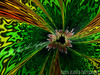 Welcome to the Jungle (Yarin Asanth) Tags: yarinasanth jungle artwork fractal gerdkozik gerdkozikphotography gerdkozikfotografie yarinasanthphotography gerdmichaelkozik