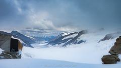 Jungfrau170707-untitled-748.jpg (flia gitterle) Tags: familiagitterlecantillo topofeurope jungfrau summer2017 europe switzerland glaciers