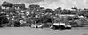Sainte-Lucie, Saint Lucia, Antilles - 3755 (rivai56) Tags: castries saintelucie lc caraïbes stlucia saintlucia carabbean antilles sus sonyphotographing île noiretblanc