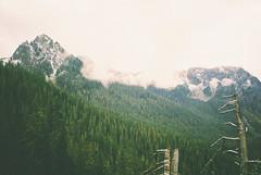 (Gabe Scalise) Tags: 35mm film kodak portra 400 nikon f3 hp gabe scalise washinton washington cascades mountains trees 50mm 14 nikkor analog washi