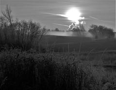 BURNING OFF THE GROUND FOG (Rob Patzke) Tags: sunrise frost fog bw monochrome lumix lx100 nature landscape