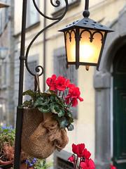 Cortona (Jolivillage) Tags: jolivillage village ville città city town cortona tuscany toscane toscana italie italy italia europa europe fleurs flowers fiore picturesque geotagged