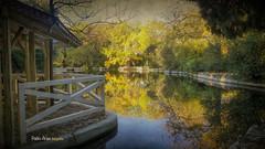 (853/17) Dreams (Pablo Arias) Tags: pabloarias photoshop photomatix capturenxd españa cielo nubes arquitectura madrea agua lago estanque árbol otoño parque parquedelcapricho madrid