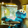 Cookie Monster (David DeCamp) Tags: whimsy cookiemonster yellow puppet bus