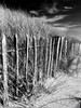 Fence on the dunes.  Anglesey (martin.bruntnell) Tags: raw canong12