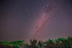 The night sky in Captiva FL (seangilbertphotography) Tags: night sky galaxy milkyway captiva florida adventure canon travel explore swflorida stars astro astrophotography