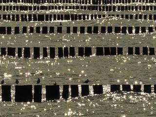 glistening waters - Baltic Sea (#2)