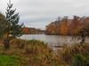 Virginia Water Lake in Autumn-EB160360 (tony.rummery) Tags: autumn autumncolours bridge em10 lake mft microfourthirds omd olympus surrey tree virginiawater sunninghill england unitedkingdom gb