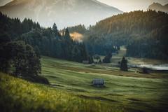 Waiting for the Sun to come (der_peste) Tags: landscape bavaria bayern garmisch garmischpartenkirchen geroldsee wagenbrüchsee lake moutain alps alpen barn almhütte hütte see wiese nebel fog mist sun sunlight forest woods