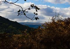Autumn day In Devon (m barraclough) Tags: dartmoor autumn landscape canon100d canon england devon nature