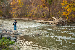 Capturing the Don River (A Great Capture) Tags: photographer man trail walk park river donvalley autumn fall donriver agreatcapture agc wwwagreatcapturecom adjm ash2276 ashleylduffus ald mobilejay jamesmitchell toronto on ontario canada canadian northamerica torontoexplore automne herbst autunno 2017 weather eos digital dslr lens canon 70d natur nature naturaleza natura naturephotography naturethroughthelens scenery scenic waterscape wet water agua eau stream outdoor outdoors stone stones rock rocks woods trees tree arbre forest wald leaves leaf foliage autumnleaves explorethedonvalley superpark