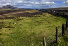 snaefell, isle of man (violica) Tags: granbretagna greatbritain isleofman mann snaefell mountsnaefell isoladiman prati meadows