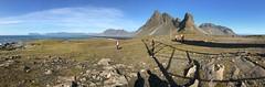 Island (michaelschneider17) Tags: island reisen natur