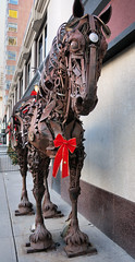 Starting to look like Christmas (OldDogNewTrick) Tags: downtown calgary horsesculpture