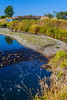 """A Bridge Too Far"" (stevenbulman44) Tags: bridge fishcreek water canon autumn fall tree blue sky 2470f28l filter polarizer calgary alberta"