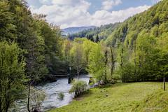 Mostić poviše Kupara Donjih (MountMan Photo) Tags: kupari most gorskikotar primorskogoranska croatia landscape rijekakupa voda