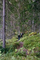 kammiovuori-kavelya-eetulinnankivi_29250718894_o (Outdoors Finland) Tags: kammiovuori mennäänmetsään sysmä