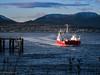 red ferry (Rourkeor) Tags: gourock scotland unitedkingdom gb harbour ferry dunoon hills boat water sea reflections olympus omd em1mk2 mft