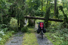 Road block (beeldmark) Tags: fietsvakantie fiets limesroute duitsland bos natuur deutschland forest germany nature bicycle cycling fietsen glashütten hessen de touring bicycletouring bicycletrip tour limes fietsroute