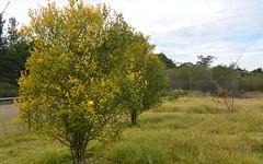 9 Cascade Crescent, Yerrinbool NSW