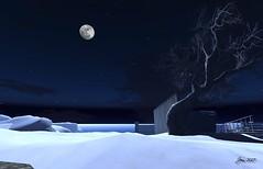 Nights in White Satin (8 of 9) (Jem Sternhall) Tags: secondlife music lyrics moodyblues nightsinwhitesatin snow winter outdoors moon landscape