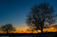 Die letzten Sonnenstrahlen (J.Weyerhäuser) Tags: hechtsheim sonnenuntergang wolken felder