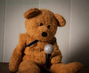 Is This Thing On (HTBT) (13skies) Tags: singing elvis brown teddybeartuesday voice music practise rehearse notes famous perfection longing hitparade songs feeling microphone happyteddybeartuesday hit hitsingle band performance bear sony