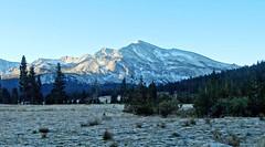 Frosty Morn Sunrise, Tuolumne Meadow, Yosemite 10-17 (inkknife_2000 (9 million views)) Tags: easternsierranevadas yosemitenationalpark california usa landscapes mountains dgrahamphoto tuolumnemeadows panorama skyandclouds granitedomes trees meadow frost frostymorning firstlight