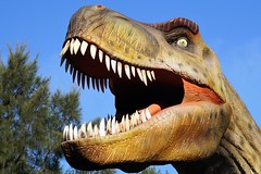 Tiranosaurio Rex (diegormd85) Tags: tiranosaurus rex temaiken httpswwwflickrcomphotostagsanimal animal dinosaur