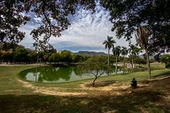 Quinta da Boa Vista - Rio de Janeiro (mariohowat) Tags: quintadaboavista fisheye samyang8mm canon natureza riodejaneiro brasil brazil