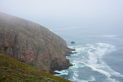 A Foggy Day (LauraJSwindle) Tags: california 2016 nikond7100 ca waterscapes landscapes ocean nearpointreyeslighthouse water september cliffs foggy overcast waves nature foliage botanical westcoast wantagh ny usa pointreyeslightstation pointreyesnationalseashore pointreyesstatepark