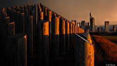 Awakening City (Codex IV) Tags: architektur aufderhub fruehling nikond5300 profan profane sigma100200 sonnenaufgang spring stangenpyramide sunrise alba architecture architettura leverdusoleil primavera profano ressort soleggiato sonnig sunny