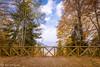 Yedigoller View/ Yedigöller Manzarası (Kalem ve Mum) Tags: yedigöller bolu nature doğa sonbahar autumn yaprak leaf mavi blue peace huzur