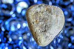 HEART OF STONE. (FRANCO600D) Tags: macromondaysstonerhymingzone stone macromondays zone stonerhymingzone pietra heartofstone hmm cuore heart bokeh canon eos600d franco600d