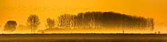Bretagne (David Torrents Arenales) Tags: ngc bretagne matinada sunrise poster mont saintmichel saint michel